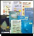 Fischbestimmungskarten